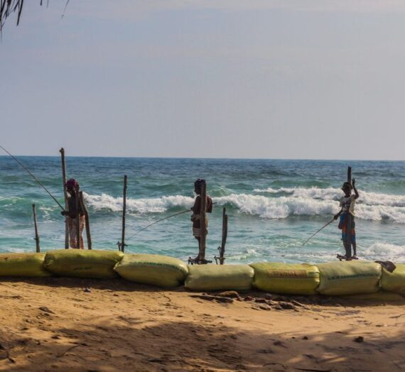 Stilt fishermen in Sri Lanka: Real or myth?